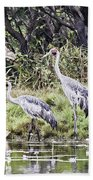 Australian Cranes At The Billabong Beach Towel
