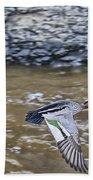 Australian Wood Duck In Flight Beach Towel