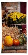 Autumn - Gourd - Autumn Preparations Beach Towel by Mike Savad