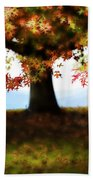 Autumn Acorn Tree Beach Towel