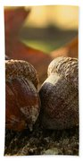 Autumn Acorns Beach Towel