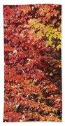 Autumn Arrival Beach Towel