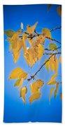 Autumn Aspen Leaves And Blue Sky Beach Towel