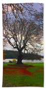 Autumn At British Camp Beach Towel