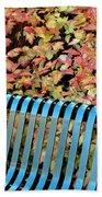 Autumn Blue Bench Beach Towel