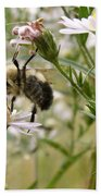 Autumn Bumblebee And Flowers Beach Towel