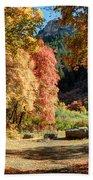 Autumn Campground In Blacksmith Fork Canyon - Utah Beach Towel