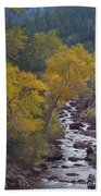 Autumn Canyon Colorado Scenic View Beach Towel