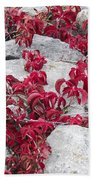 Autumn Color Is Red Beach Towel