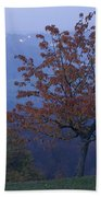 Autumn Colour At Dusk Beach Towel