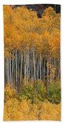 Autumn Curtain Beach Towel