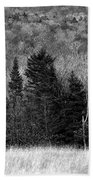 Autumn Field Bw Beach Towel