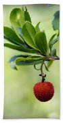 Autumn Fruits In Red Beach Towel