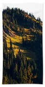 Autumn In A High Mountain Meadow Beach Towel
