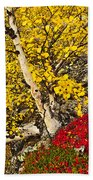 Autumn In Finland Beach Towel