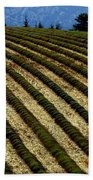 Autumn In Provence Beach Towel
