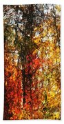 Autumn In The Woods Beach Towel by David Lane