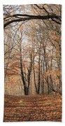 Autumn In The Woods Beach Towel
