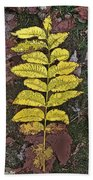 Autumn Leaf Art I Beach Towel