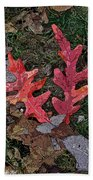 Autumn Leaf Art IIi Beach Towel