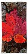 Autumn Leaf Art Iv Beach Towel