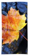 Autumn Leaf On The Water Level Beach Towel