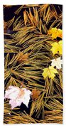 Autumn Leaves On Straw On Water Beach Towel