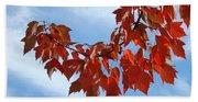 Autumn Leaves Tree Red Orange Art Prints Blue Sky White Clouds Beach Towel