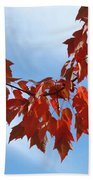 Autumn Leaves Tree Red Orange Art Prints Blue Sky White Clouds Beach Towel