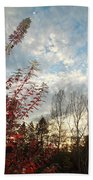 Autumn Maple And Sky Beach Towel
