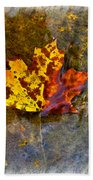 Autumn Maple Leaf In Water Beach Towel