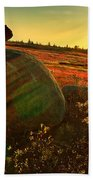 Autumn Morn In The Berry Field Beach Towel