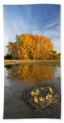 Autumn Nest Beach Sheet