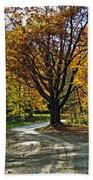 Autumn Oak Beach Towel