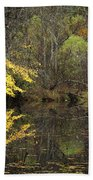 Autumn On The Pond Beach Towel