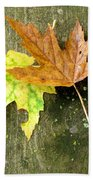 Autumn Pair Beach Towel