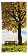 Autumn Park Beach Towel by Elena Elisseeva