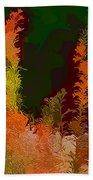 Autumn Pastel Beach Towel by Tom Prendergast