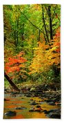 Autumn Reflects Beach Towel