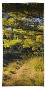 Autumn Scene Of The Little Manistee River In Michigan No. 0882 Beach Towel