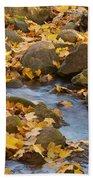 Autumn Slipping Away 0437 Beach Towel