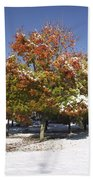 Autumn Snow Beach Towel