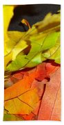 Autumn Spotlight Beach Towel