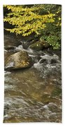Autumn Stream 6149 Beach Towel