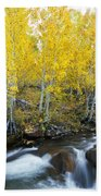 Autumn Stream Iv Beach Towel