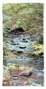 Autumn Streams Beach Towel
