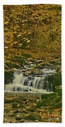 Autumn Surrounded In Color Beach Towel