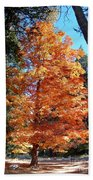 Autumn Tree Beach Sheet