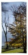 Autumn Tree In Backlight Beach Towel