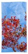 Autumn Trees Art Prints Blue Sky White Clouds Beach Towel